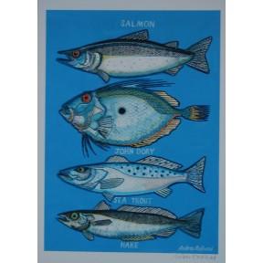 Four Fish Salmon. John Dory, Sea Trout, Hake. A3