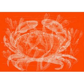 Orange crab A4