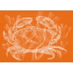 Crab .A4.Orange