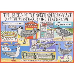 Birds of North Norfolk A4