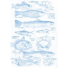Fish .A4. Blue